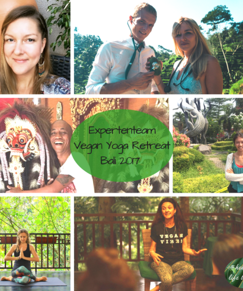 Team Vegan Yoga Retreat Bali 2017