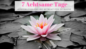 Newsletter Online Retreat Healthylifebalance