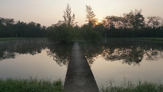 Ānāpānasati Healthylifebalance Suan Mokkh